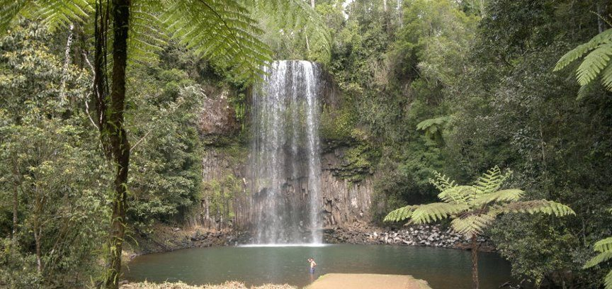 The famous Millaa Millaa Falls near Cairns
